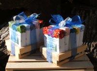 Soap Sampler Box of 5 in Tray