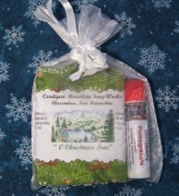 Christmas Tree 1.75oz Soap and Blackberry Pomegranate Lip Balm