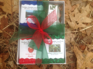 Scents of Newfound Gift Box  NEW!